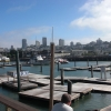 Pier_39_10